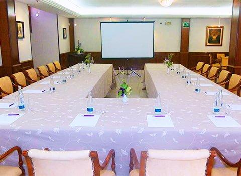 sala de conferencias y reuniones hotel chane